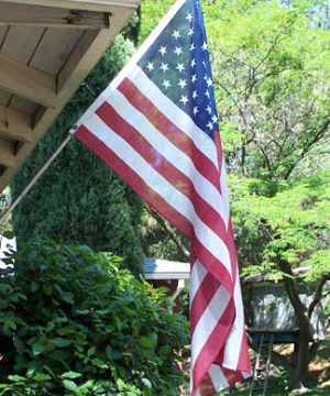 Backyard USA Flag