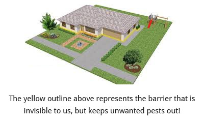 We Keep Pests Out!